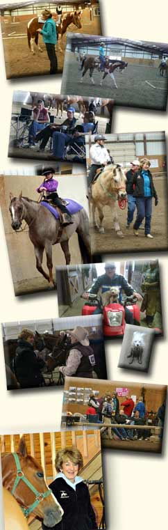training, boarding, horses for sale, lessons